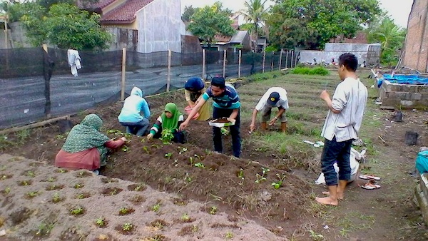 Sekolah_Tani_Muda_SPI_Yogyakarta