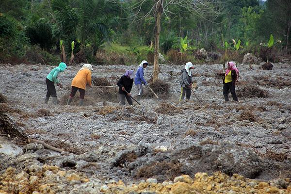 kampung reforma agraria SPI Langkat