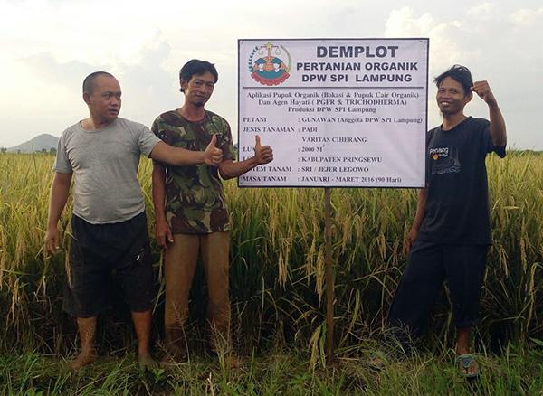 SPI Lampung