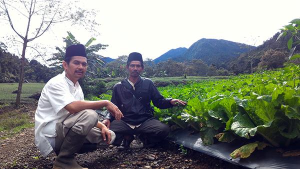 reforma agraria sejati
